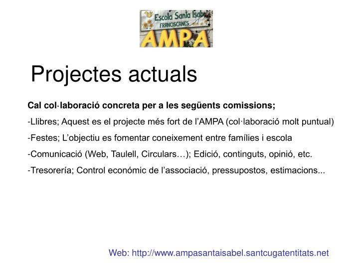 Projectes actuals