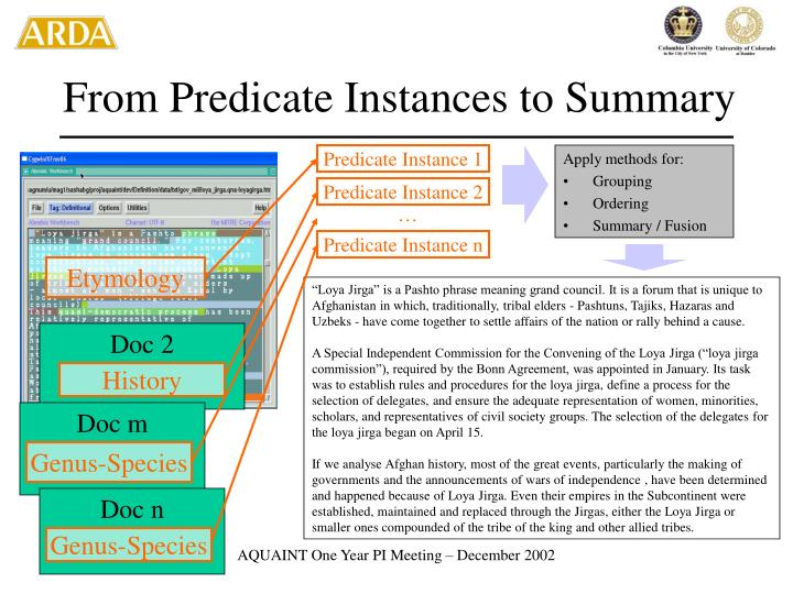 From Predicate Instances to Summary