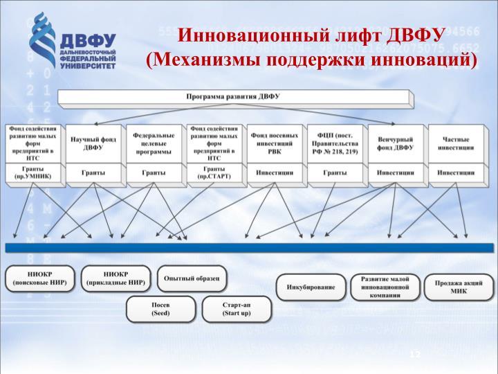 Инновационный лифт ДВФУ