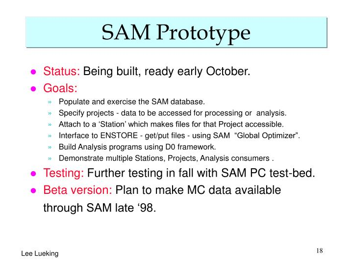 SAM Prototype