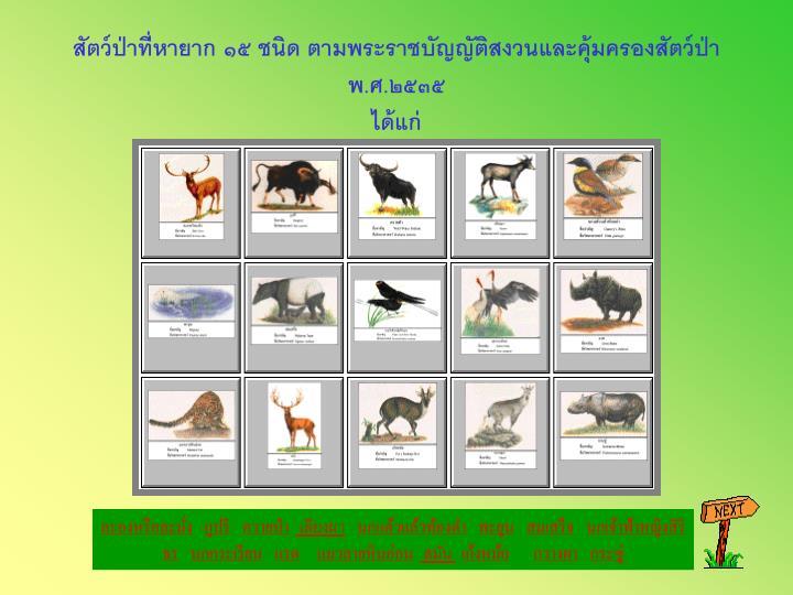 สัตว์ป่าที่หายาก ๑๕ ชนิด ตามพระราชบัญญัติสงวนและคุ้มครองสัตว์ป่า พ.ศ.๒๕๓๕