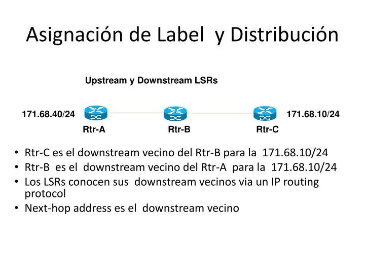 Asignación de Label  y Distribución
