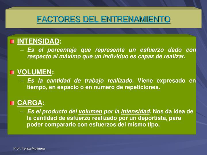 FACTORES DEL ENTRENAMIENTO