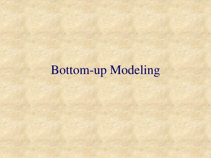 Bottom-up Modeling