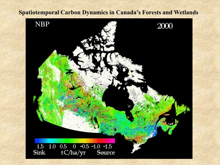 Spatiotemporal Carbon Dynamics in Canada's Forests and Wetlands