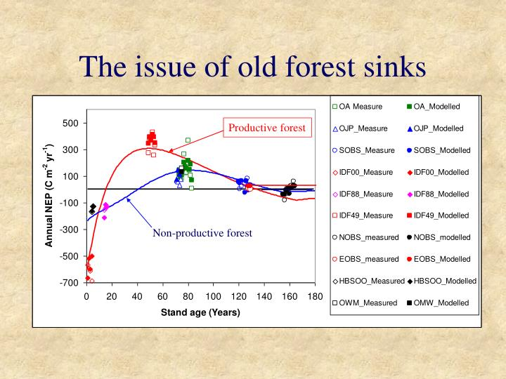 The issue of old forest sinks