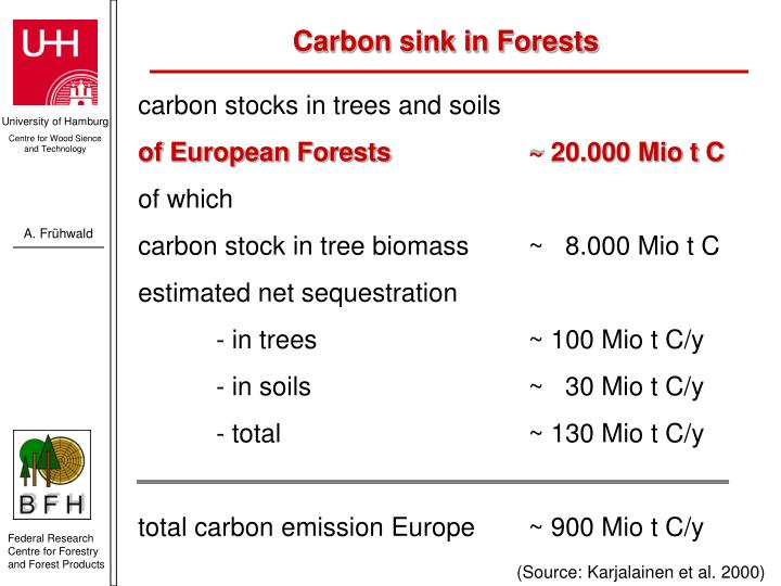 Carbon sink in Forests