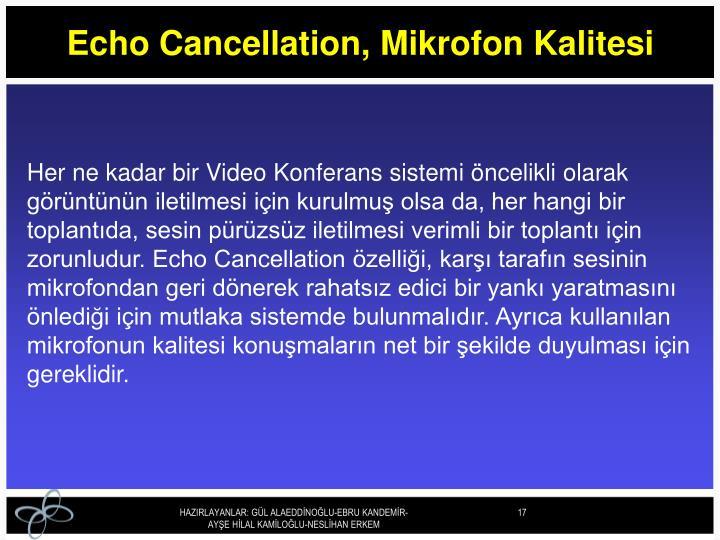 Echo Cancellation, Mikrofon Kalitesi