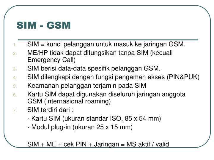 SIM - GSM
