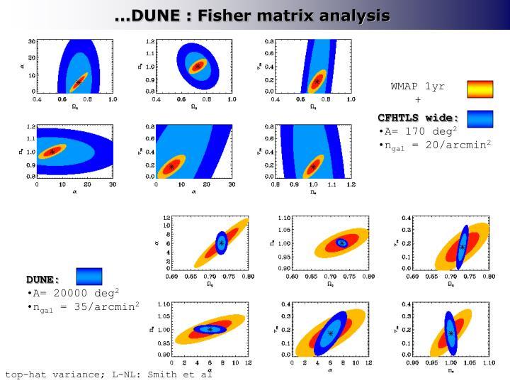 ...DUNE : Fisher matrix analysis