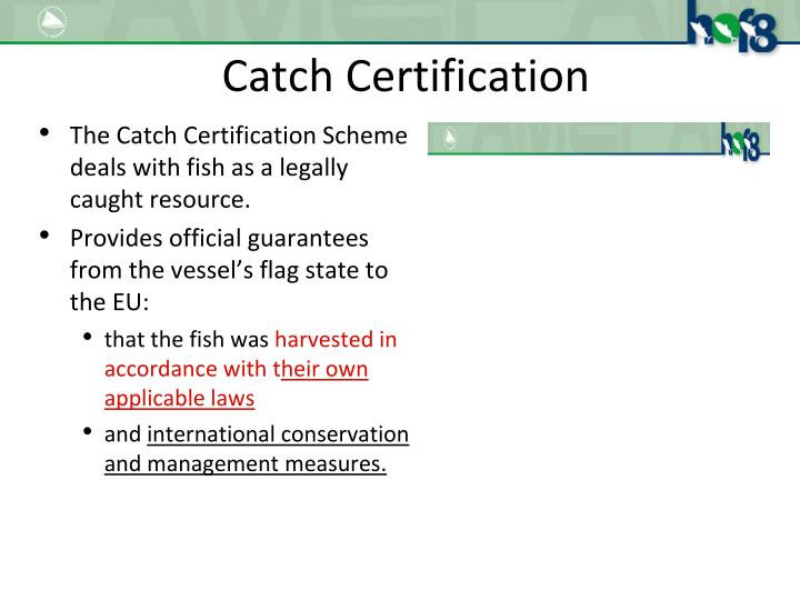 Catch Certification