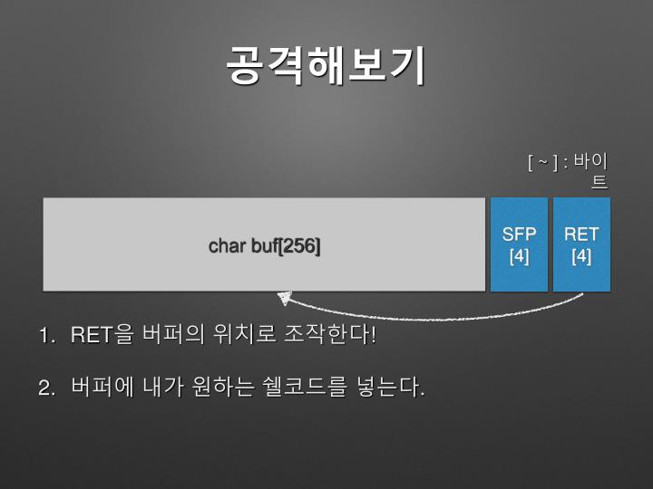 char buf[256]