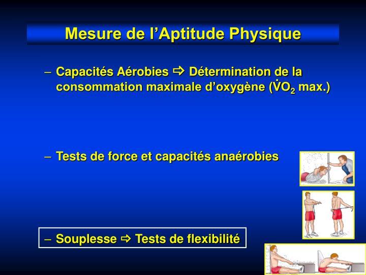 Capacités Aérobies