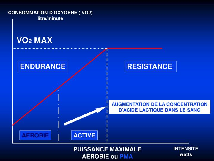 CONSOMMATION D'OXYGENE ( VO2)