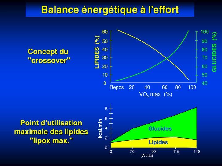 Balance énergétique à l'effort