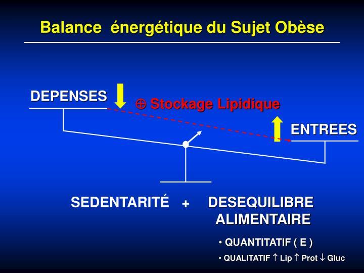 Balance  énergétique du Sujet Obèse