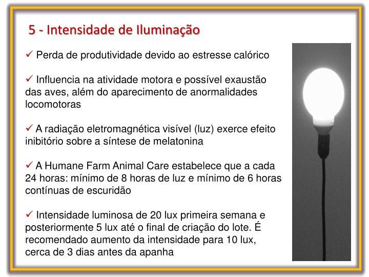 5 - Intensidade de Iluminação