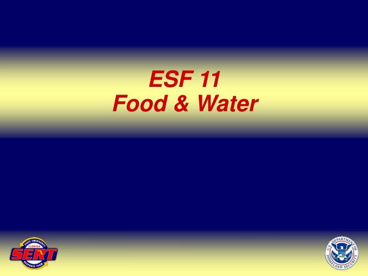 ESF 11