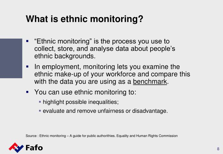 What is ethnic monitoring?