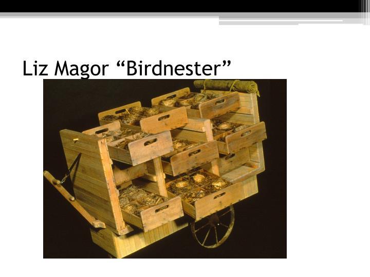 "Liz Magor ""Birdnester"""