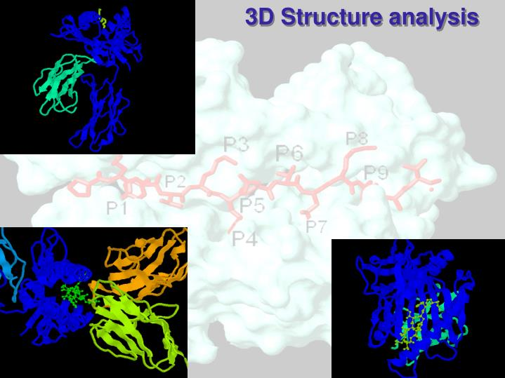 3D Structure analysis