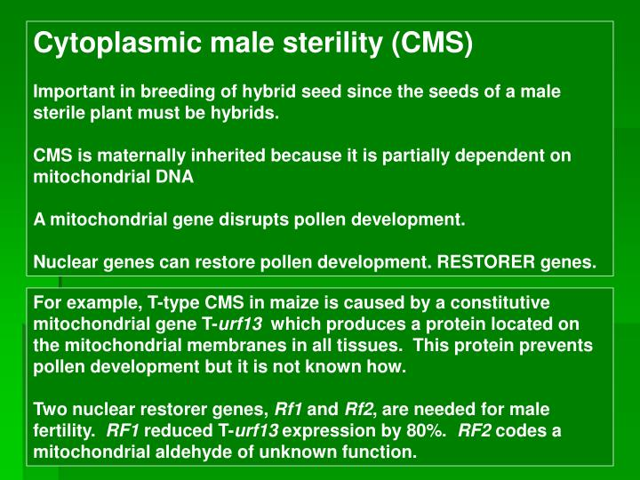 Cytoplasmic male sterility (CMS)