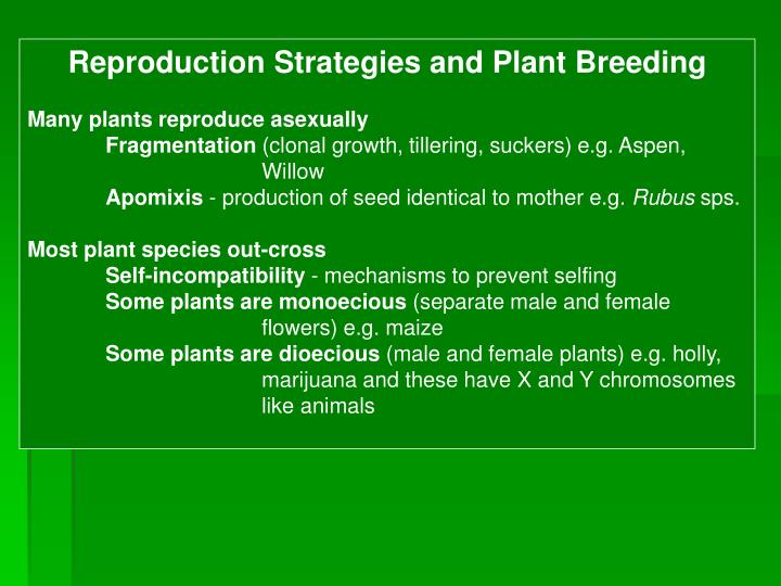 Reproduction Strategies and Plant Breeding