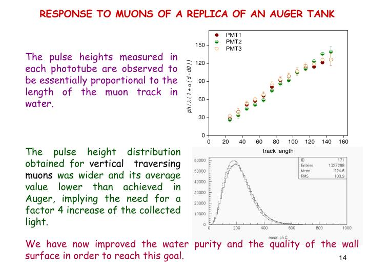 RESPONSE TO MUONS OF A REPLICA OF AN AUGER TANK