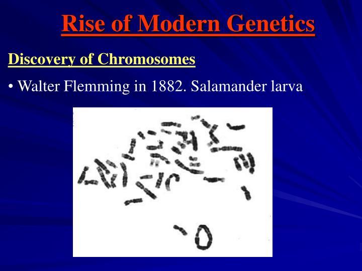 Rise of Modern Genetics