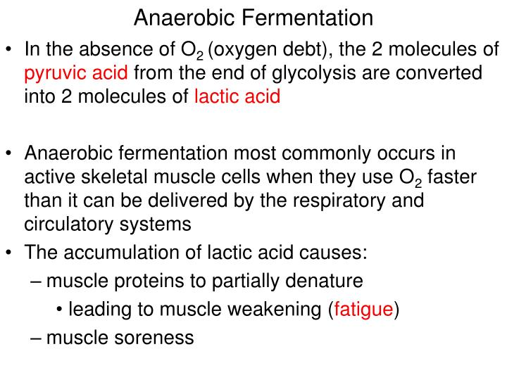 Anaerobic Fermentation