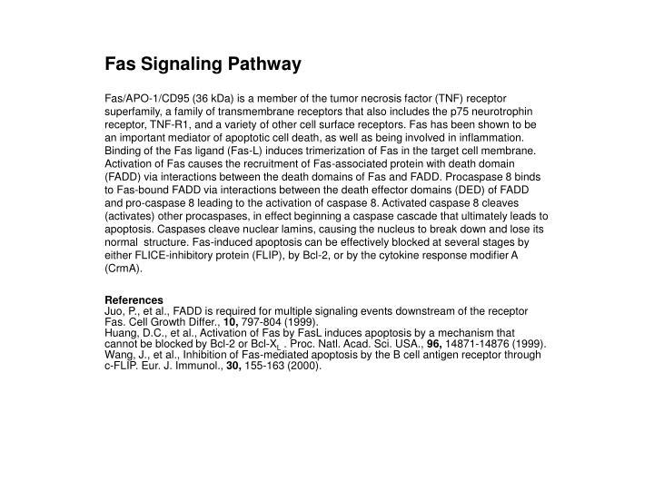 Fas Signaling Pathway