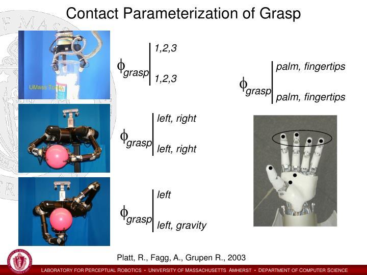 Contact Parameterization of Grasp