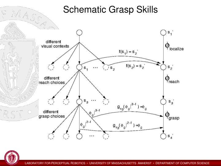 Schematic Grasp Skills