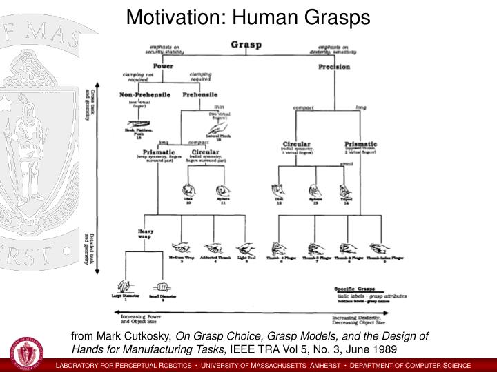 Motivation: Human Grasps