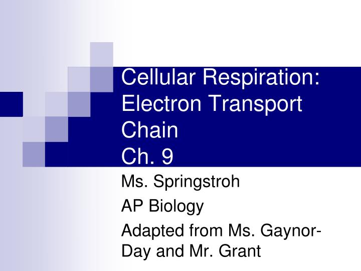 Cellular respiration electron transport chain ch 9