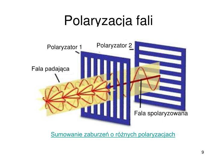 Polaryzator 2