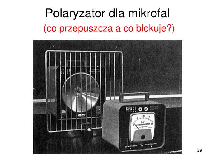 Polaryzator dla mikrofal