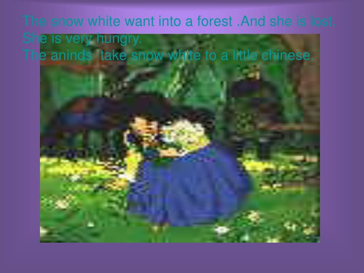 The snow white want into a forest .And she is lost. She is very hungry.