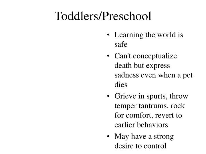 Toddlers/Preschool