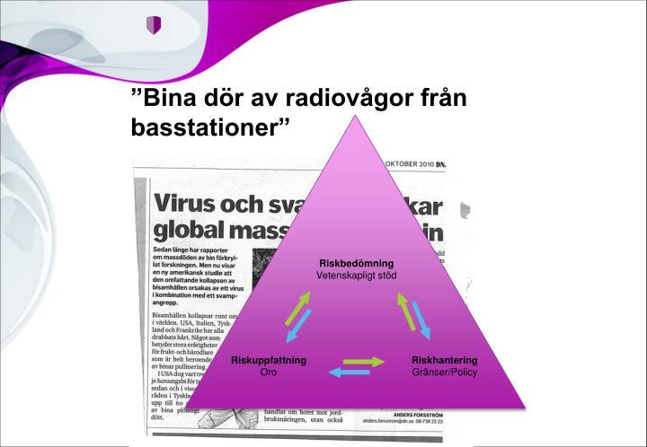 """""""Bina dör av radiovågor från basstationer"""""""