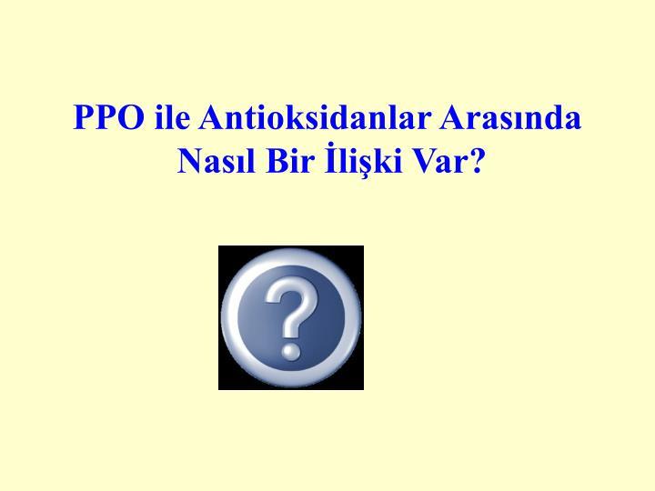 PPO ile Antioksidanlar Arasında