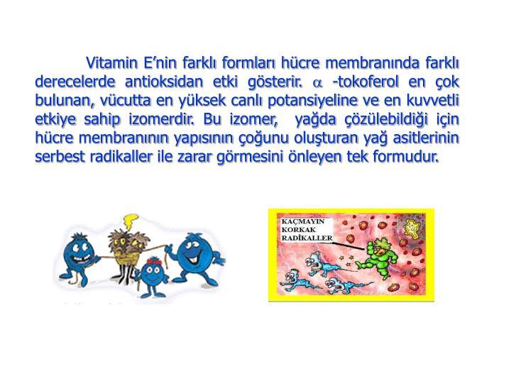 Vitamin E'nin farklı formları hücre membranında farklı derecelerde antioksidan etki gösterir.