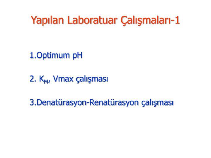 Yapılan Laboratuar Çalışmaları-1