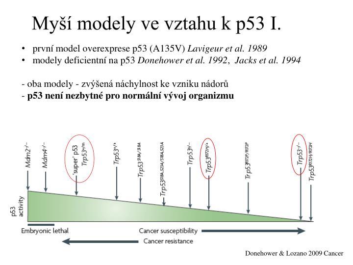 Myší modely ve vztahu k p53 I.