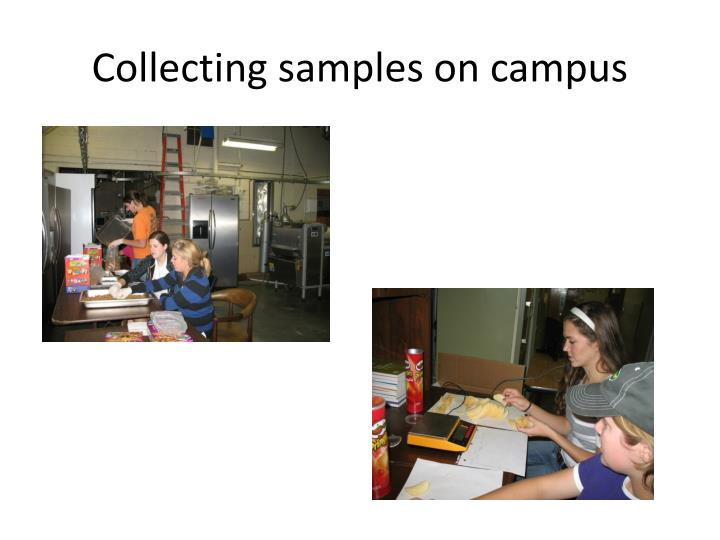 Collecting samples on campus