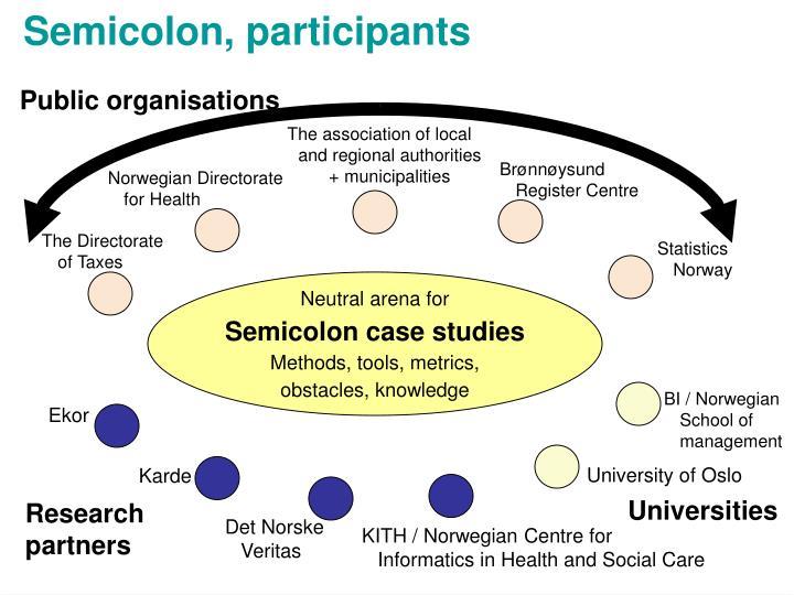 Semicolon, participants