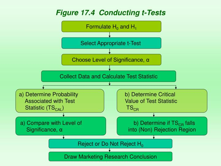 Figure 17.4  Conducting t-Tests