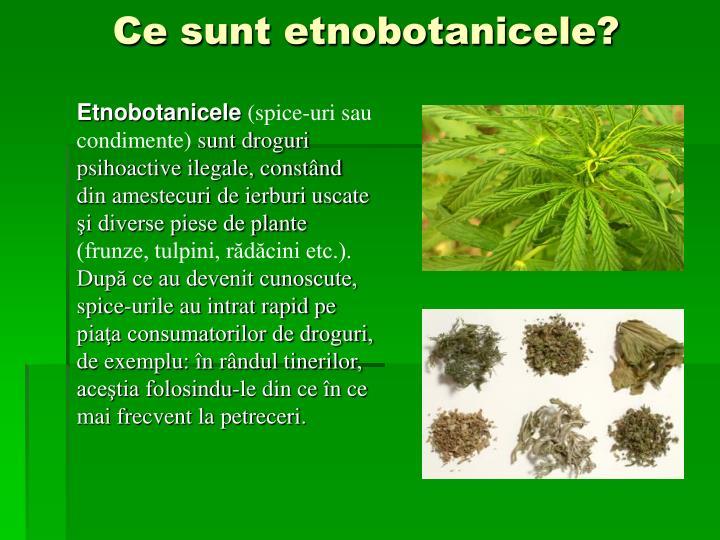 Ce sunt etnobotanicele?