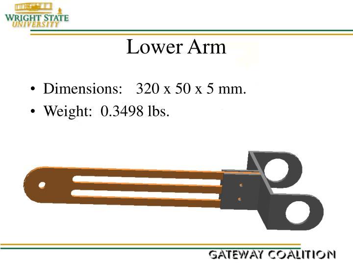 Lower Arm