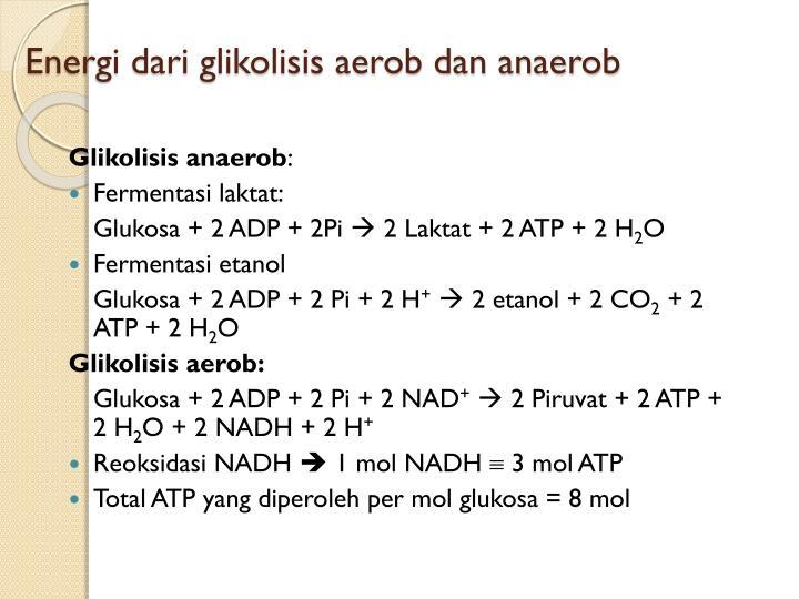 Energi dari glikolisis aerob dan anaerob